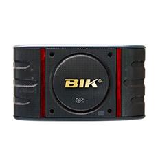 Karaoke speaker BIK BS 998