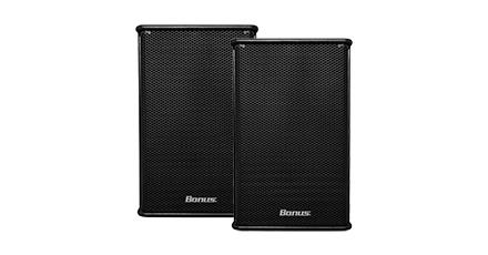 Karaoke Speaker Bonus PS-12F