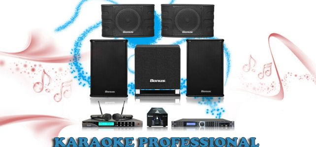 Business professional karaoke BA-02KD
