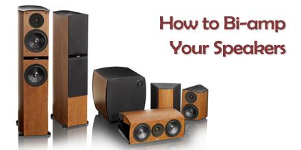 Bi-wire Speaker