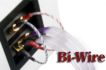 What is bi-wire?