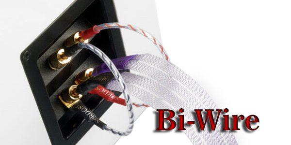 Đấu Bi-Wire là gì?
