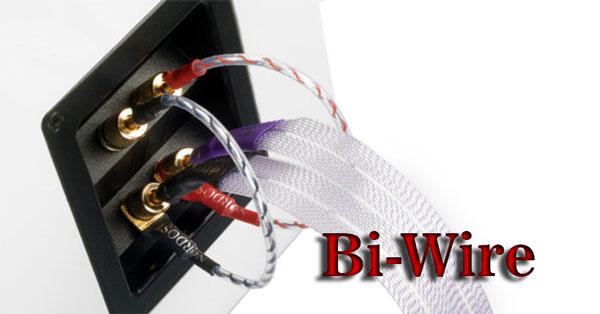 Đấu Bi-Wire